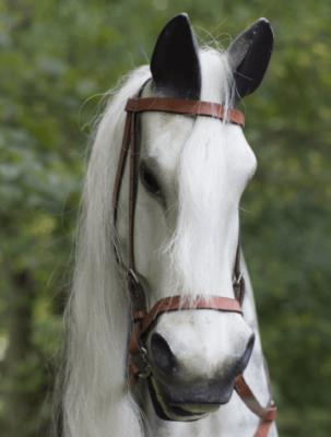 Yorkshire Rocking Horses Create Amazingly Lifelike Horses